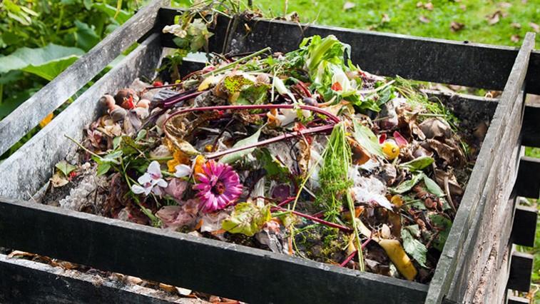 Már februárban megkezdődnek az első kerti munkák
