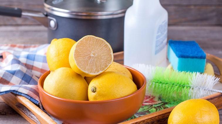 A citrusecet elbánik a kosszal és a penészekkel is